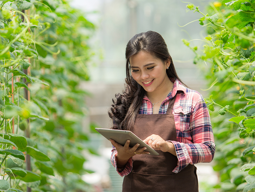 vine_crop_worker_farm_tablet_artemis